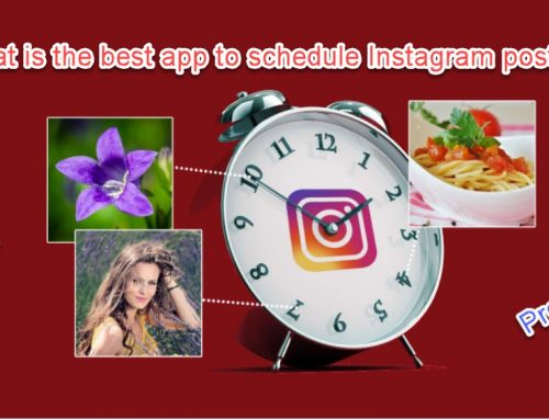What is the best app to schedule Instagram posts? 5 app suggestions from Instagram gurus